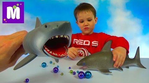 Видео Акула растущая в воде и игрушечная акула Челюсти, выращивание в воде