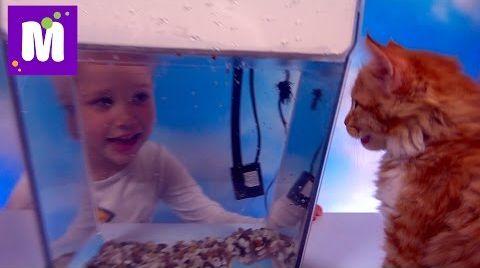 Видео Акваферма выращиваем салат в аквариуме