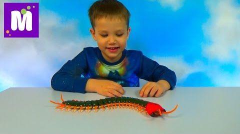 Видео Гигантская сороконожка на инфракрасном управлении распаковка игрушки