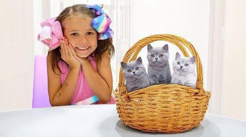 Видео Катя и её котята в гостях у Макса