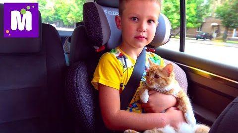 Видео Кошечка Мурка и Макс едут в гости ВЛОГ едем в Киев ДжекПот ЧЕЛЛЕНДЖ и Пушка - Пердушка Миньоны
