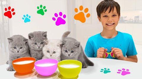 Видео Макс и Катя играют в прятки с котятами