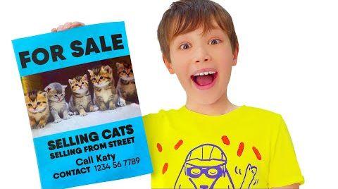 Видео Макс продаёт котят