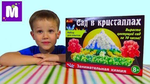 Видео Сад в кристаллах набор проводим эксперимент