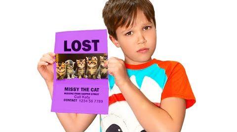Видео У Кати Пропали котята