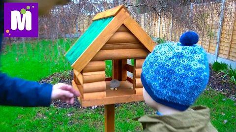 Видео ВЛОГ. Домик для белочек и птичек / Куча посылок / Вещи Макса и Кати