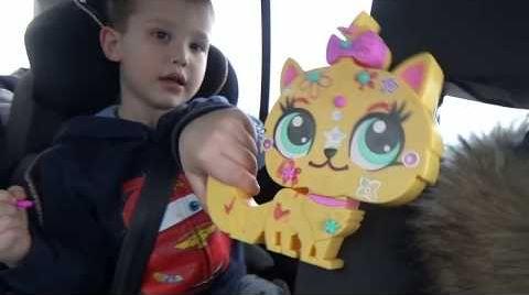 Видео ВЛОГ Едем на авто делаем фруктовый челлендж распаковка сюрпризов с собачками